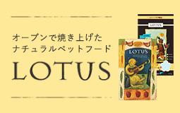 オーブンでじっくり焼きあげた「lotus」