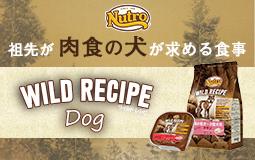 ワイルドレシピ ドッグフード「wild recipe dog」