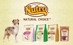 ニュートロナチュラルチョイス ドッグ「natural choice dog」