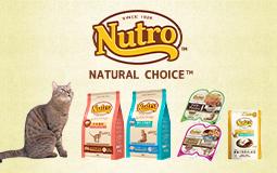 ニュートロナチュラルチョイス キャット「natural choice cat」